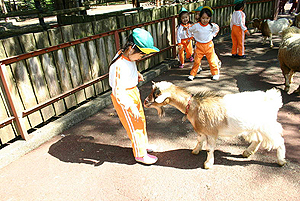 動物公園に遠足